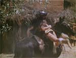 Sunya bortføres - bemærk de meget moderne sorte trusser.