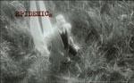 """Et klip fra """"filmen-i-filmen"""" – her Dr. Mesmer (Lars von Trier), der ankommer uden for den pestramte by"""