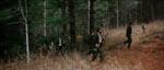 Lokale idioter begynder at jage bjørnen.