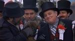 Højtidelighederne på Groundhog Day - her kommer den lille gnaver frem i lyset.