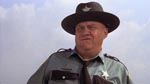 Sydstatssheriffen J.W. Pepper (Clifton James)