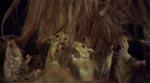 De skrækkelige rotter Von Starker sænker Lise ned til viser sig at være nuttede hamstre