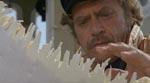 Den gamle søulk Ron Hamer (Vic Morrow) som taget direkte ud af 'Jaws'