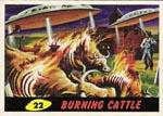 Kortet 'Burning Cattle' fra de originale samlekort