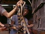 På slangeindkøb - uhm...!