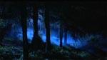 De mørke skove omkring doktorens koloni genlyder af uhyggelige hyl