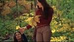 Mari Collingwood (Sandra Cassel).