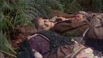 Døde i skovbunden.