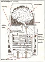 Illustration af cyborg-hjerneboks med computer