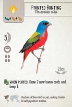 En Painted Bunting - et eksempel på et af de fuglekort, hvis funktion træder i kraft i det øjeblik, kortet spilles.