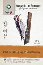 Endnu et eksempel på ét af de smukt illustrerede og layoutede fuglekort.